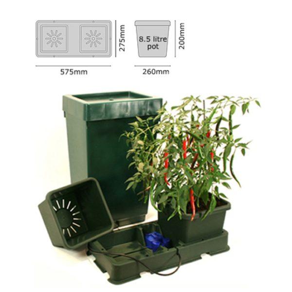 easy2grow-kit2