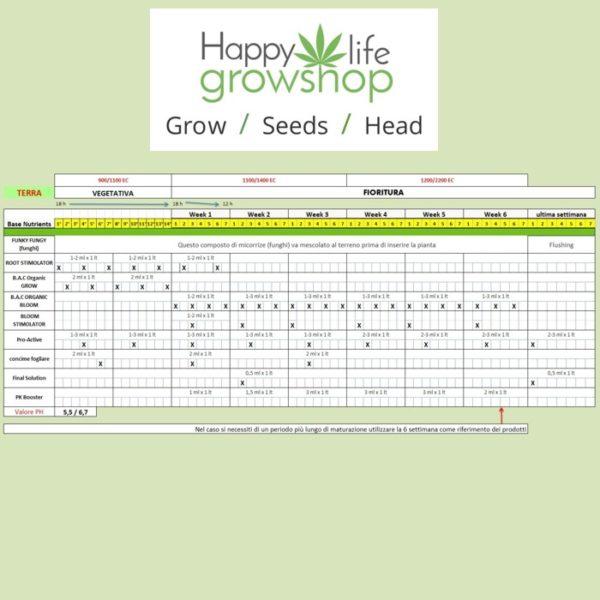 schema BAC -happylifegrowshop