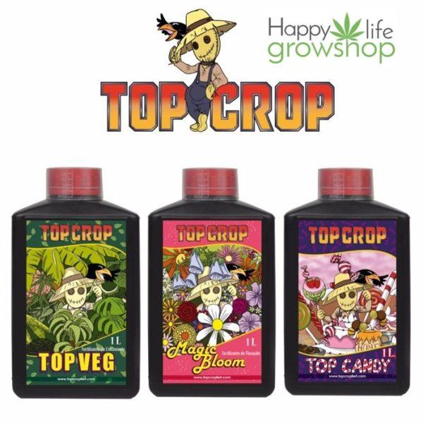 Kit 2- top-crop-top-veg-bloom-candy