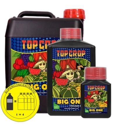 big-one - top crop - happylifegrowshop
