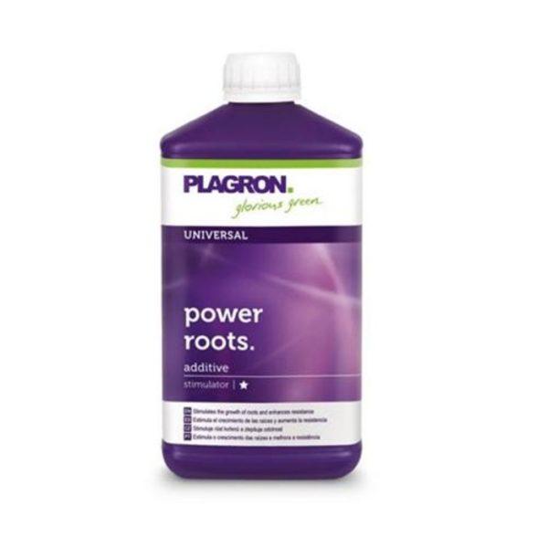 Plagron-root