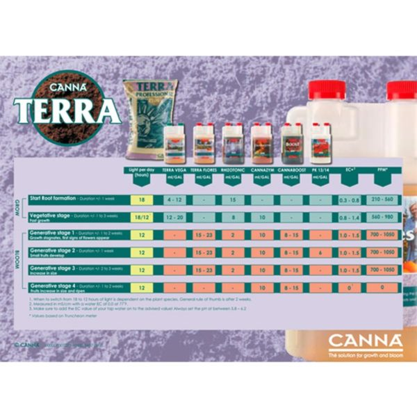 tabella CANNA TERRA